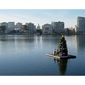 lakemerritt oakland christmastree