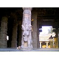 this is the sculpture predominant in all the pillars of the temple.