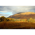 Autumnal glory Scotland
