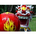 ftcomprat dragon dance ball chinesenewyear pinoykodakero jett366