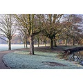 Shot at the pack& river clolne at Colchester Castle Pack in Essex on a cold frost morning