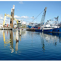 reflectionthursday harbour basin fremantle wa littleollie