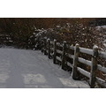 shadows snowscape fence winter