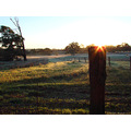 fog frost paddocks sunrise perth hills littleollie