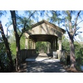 Covered Bridge in Grenyolds Park, Aventura, FL