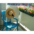 balcony chair sunshine