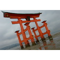 floating torii tide out miyajima island japan