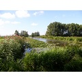 netherlands delier flora water view nethx delix florx waten viewn