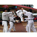 Taewongdo action kick asian