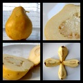 apricot pear fruit exotic