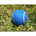 blue ball tennis tennisball closeup