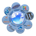 Cheap durpal hosting Web Development