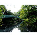 reflectionthursday bridge beddington park