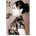 china lady girl portrait cheongsam classical nostalgic oriental
