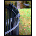 rails railings black iron fence