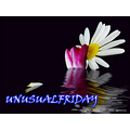 UNUSUALFRIDAY
