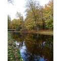 netherlands vuursche autumn tree water nethx vuurx treex waten autux