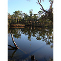 reflectionthursday swan river bridge highway perth littleollie