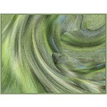 abstract green fish waves