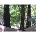 bigsur camp tent