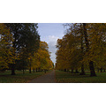 London Parks seasons