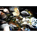 rock rocks water leaf floating lomo lomography effect