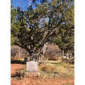 glenwood springs colorado gsfph pioneer cemetery linwood