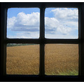 window field