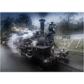 steam puffing billy rain locomotive train