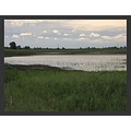landscape field bush inland water polder flooding wind storm sky clouds