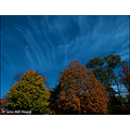 stlouis missouri us usa fall colors trees sky clouds 103010
