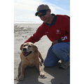 Man Dog Golden lab Beach Galviston