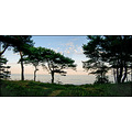 bornholm paradise vacation green sea nature beach view denmark summer