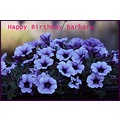 Birthdaycard Barbara