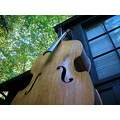 acoustic upright 78 double bass peterpinhole