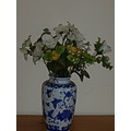 ftcompculture China vase Flowers Pot