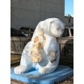 Cancer Care Manitoba bear