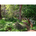 stairs path Araluen Botanic Park perth littleollie