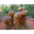 compautumn07 sculpture mushrooms forest