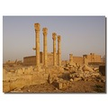 syria palmyra architecture temple ruins syrix palmx archs temps