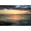 orewa beach orewabeach sunrise