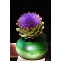 artichoke blue green sun light
