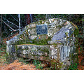"""The """"Chair"""" at Hogsback in the forest"""