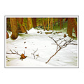 forest creek yonghan river mountaim winter snow wild scene