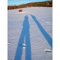shadow shadows person people sun blue snow sky cold field