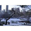 centralpark park newyorkcity ny snow buildings lake people trees