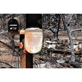 telegraphfire2008 fire homes lost mailbox