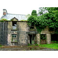 old house trees abandoned disused Sligo Ireland ruin