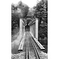 monochrome blackwhite bridges railways