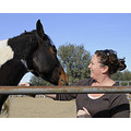 safe haven horse rescue cottonwood california lisasam67